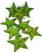 Holzscheiben-Stern 15cm grün zum Hängen 8er-Set